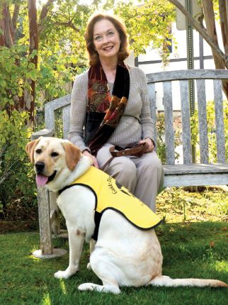 Photo by Dan Vang / OUTLOOK Pasadena resident Gwen Whitson and her foster puppy, Serenity, have been a team since the yellow Labrador was just 7 weeks old. She'll return Serenity to the Guide Dogs of America when she's full-grown and ready to begin her guide dog training at the GDA's Sylmar facility.