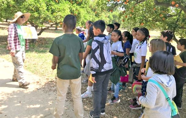 Photos courtesy Pasadena Community Gardens Conservancy PCGC-sponsored School Gardens manager Jill McArthur leads a gardening workshop for PUSD 3rd-grade students in the Huntington Library's citrus orchards; many PUSD school gardens now have their own orchards.