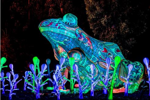 Photo courtesy Marlyn Woo / Joanne Wilborn The L.A. County Arboretum and Botanic Garden in Arcadia is featuring a nighttime lantern festival with more than 60 displays of whimsical creatures, such as this tree frog.